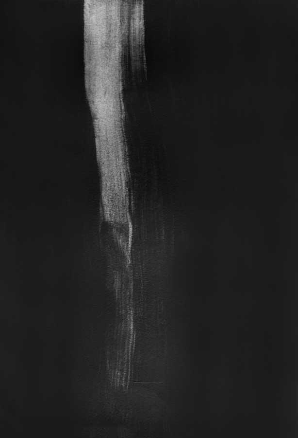Arbre fantôme, graphite sur papier, ht 36 x 26 cm