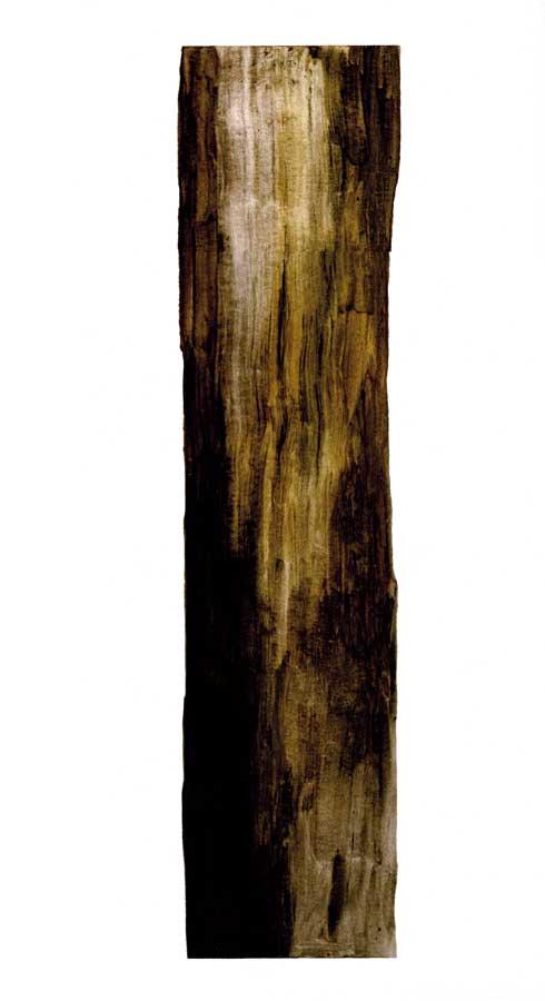 Arbre, encres sur papier, ht 30 x 30 cm